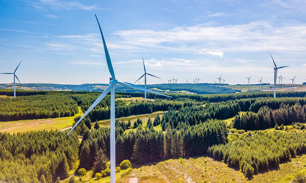 wind turbines in fields