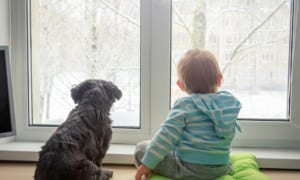 10 tips to choose the best double glazing to combat the cold