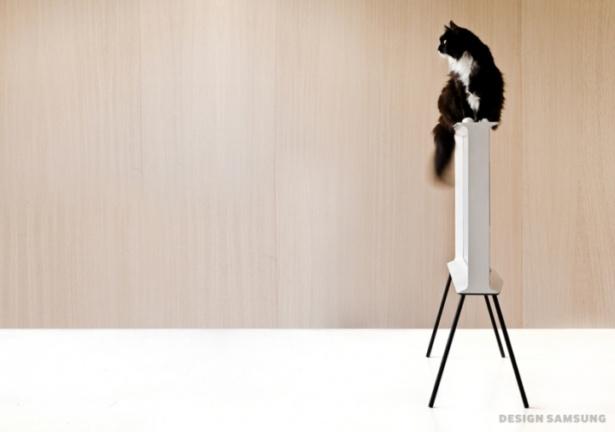 Samsung Serif TV with cat