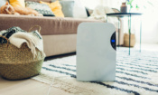 Your dehumidifier questions answered: from when you need one to which are best