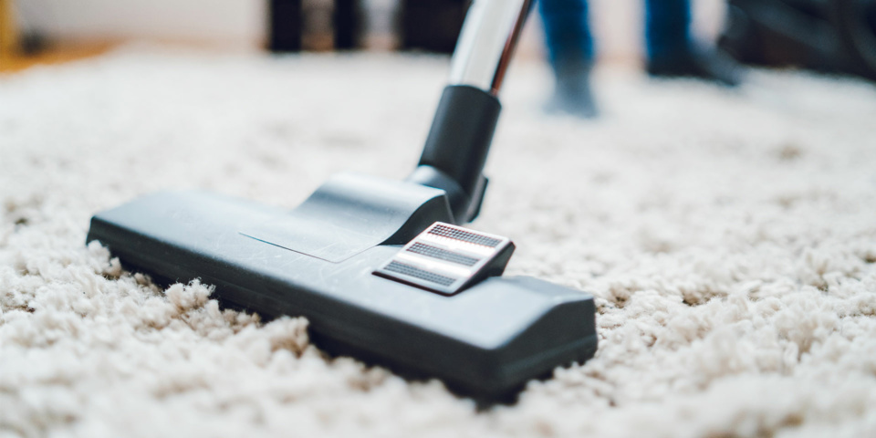 6 things you should never vacuum unless you want to destroy your Dyson