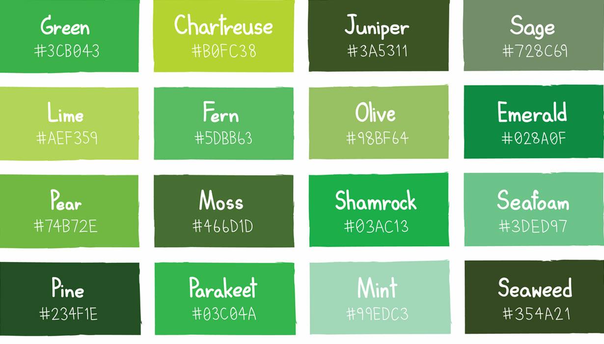 Green colour pallet