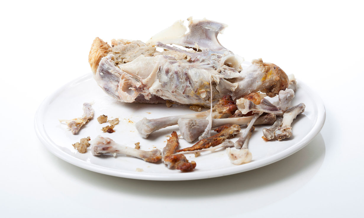 Chicken carcass stripped of meat