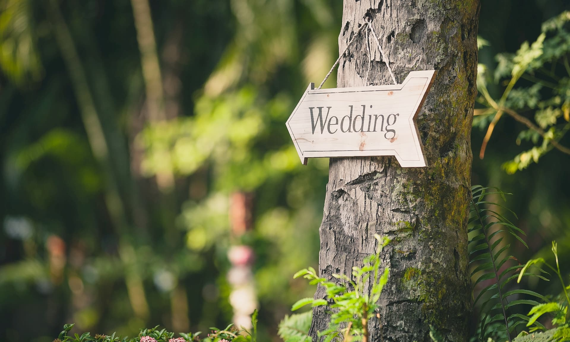 Wedding receptions reduced to 15 people – Which? News