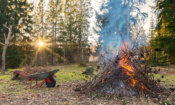 Coronavirus: councils tell residents to stop lighting fires to help people with respiratory conditions