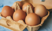 Food safety notice: Eggs removed from supermarkets over salmonella concerns
