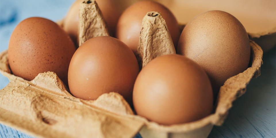 Certain supermarket eggs subject to food safety notice due to salmonella concerns