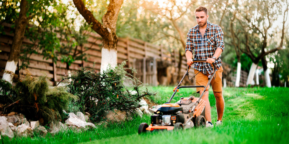 Cordless, petrol or electric – which type of lawn mower can you rely on?