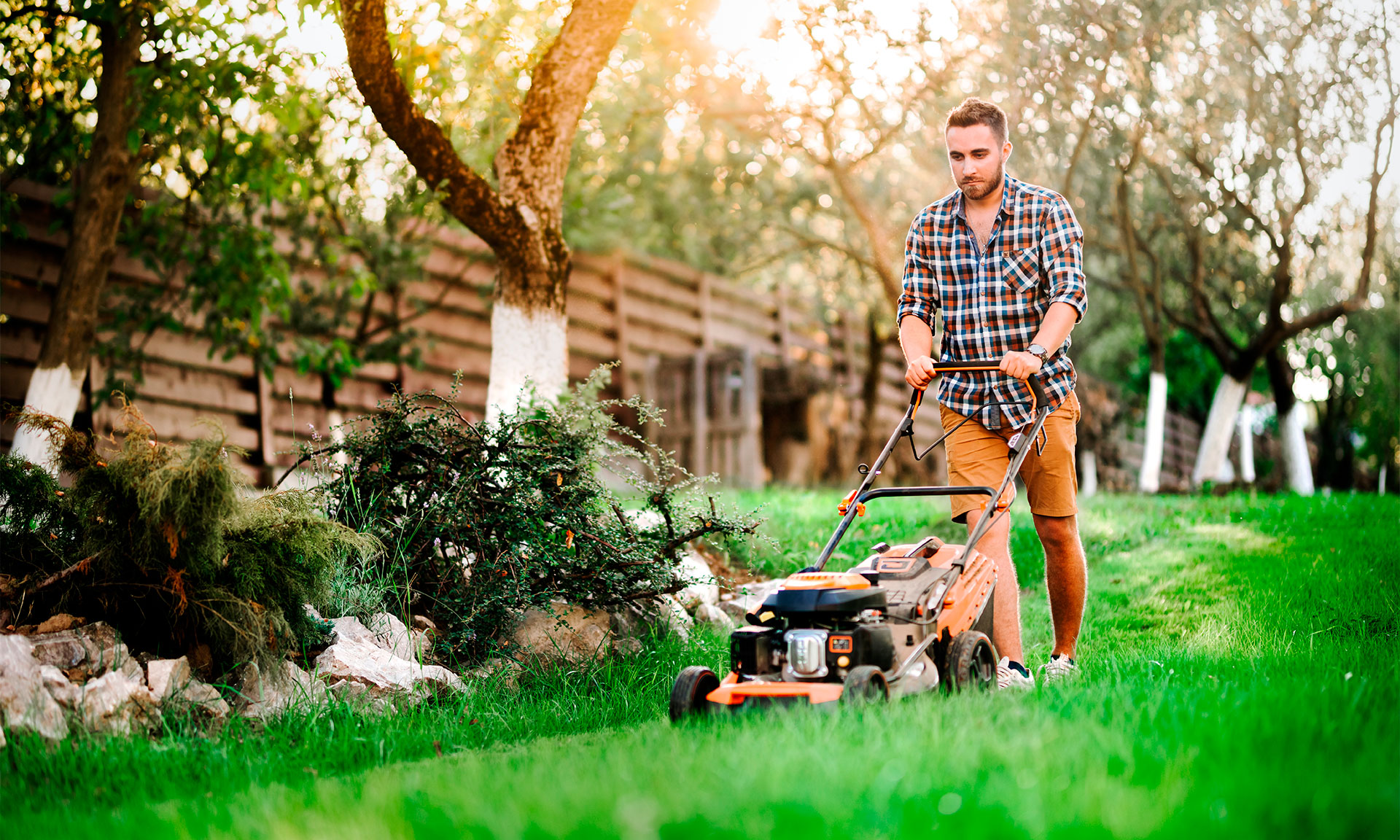 Cordless, petrol or electric - which type of lawn mower can you rely on? – Which? News