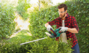 Lidl launches new cordless garden tools