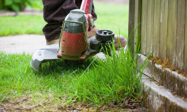 Using a grass trimmer