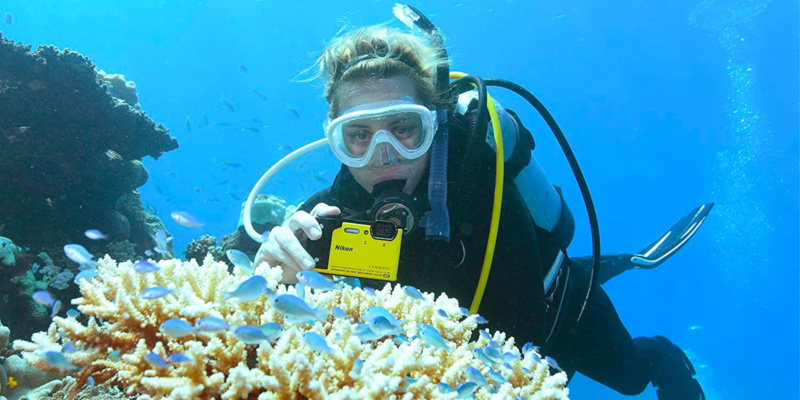 Should a waterproof compact camera be in your beach bag this summer?
