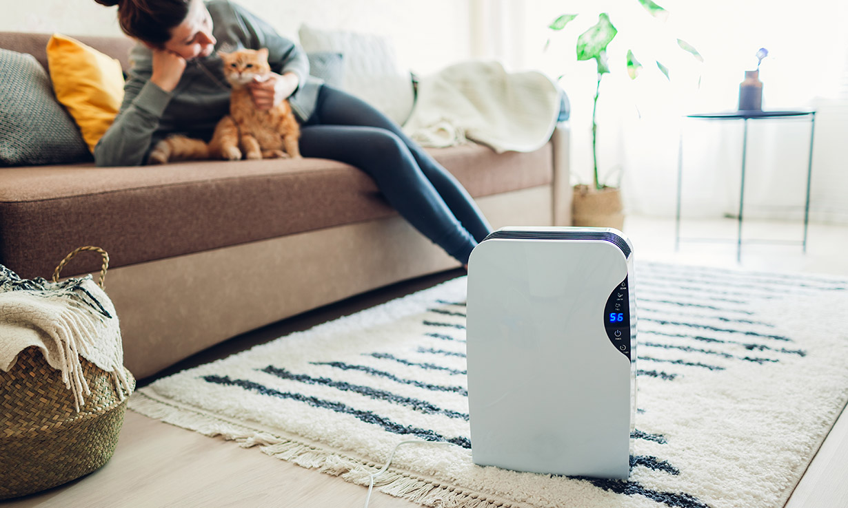 Air purifier in a home