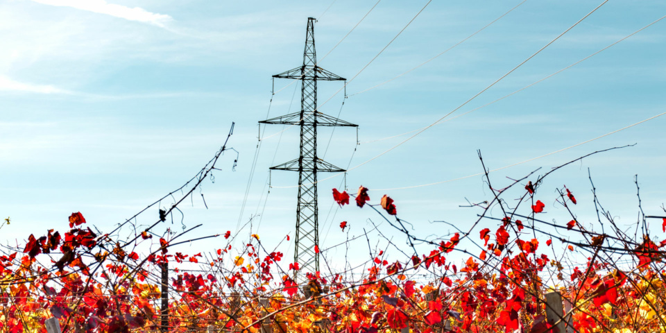 Top five energy deals for September: keep your bills down as the days get chilly
