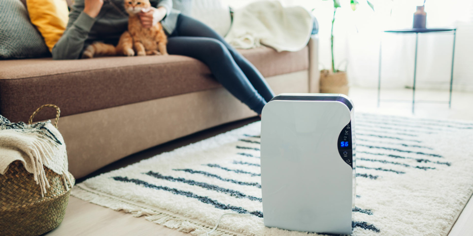 Just tested: which of these air purifiers is best for cleaning up the air in your home?