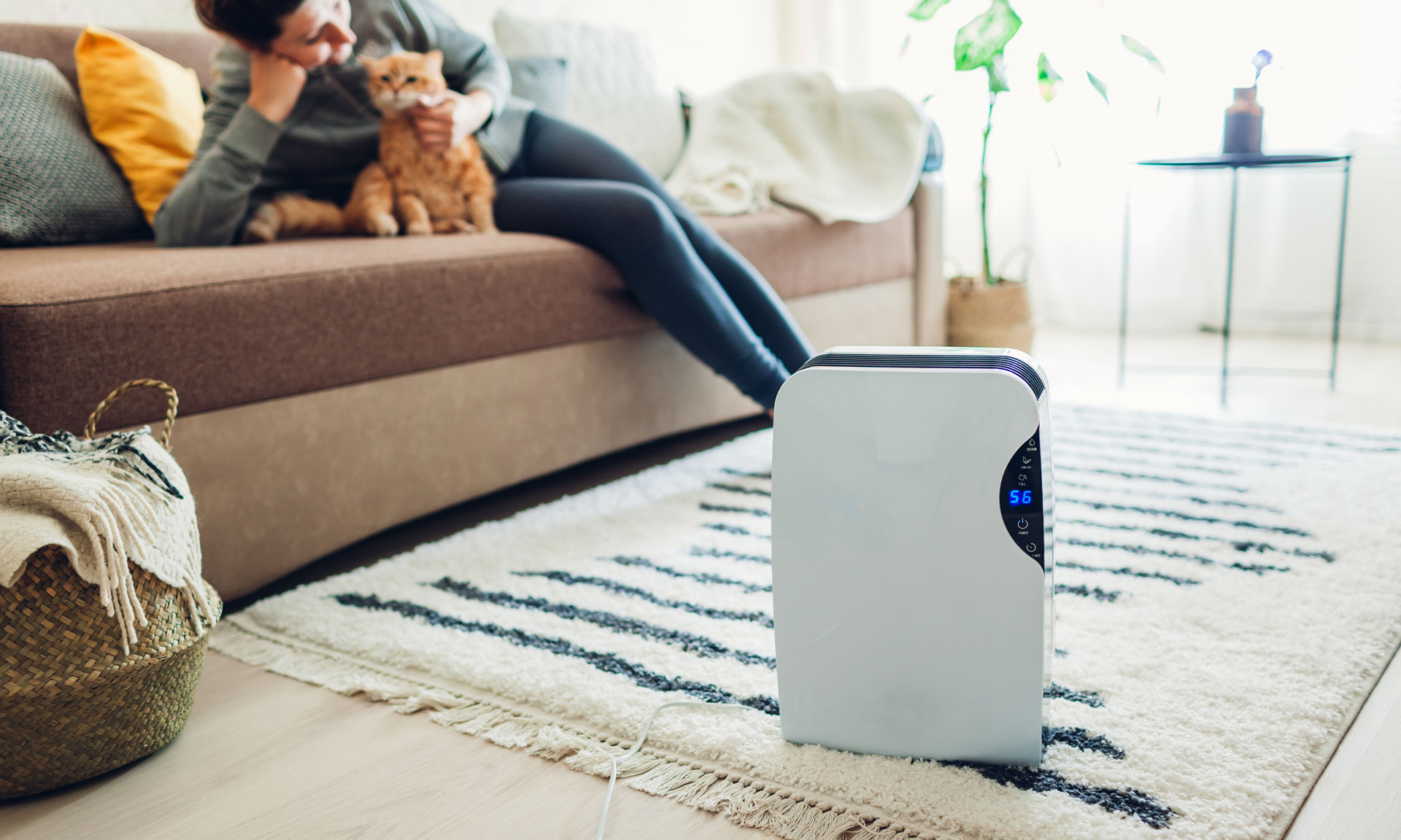 Just tested: which of these air purifiers is best for cleaning up the air in your home? – Which? News