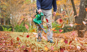10 things you should never do with your leaf blower