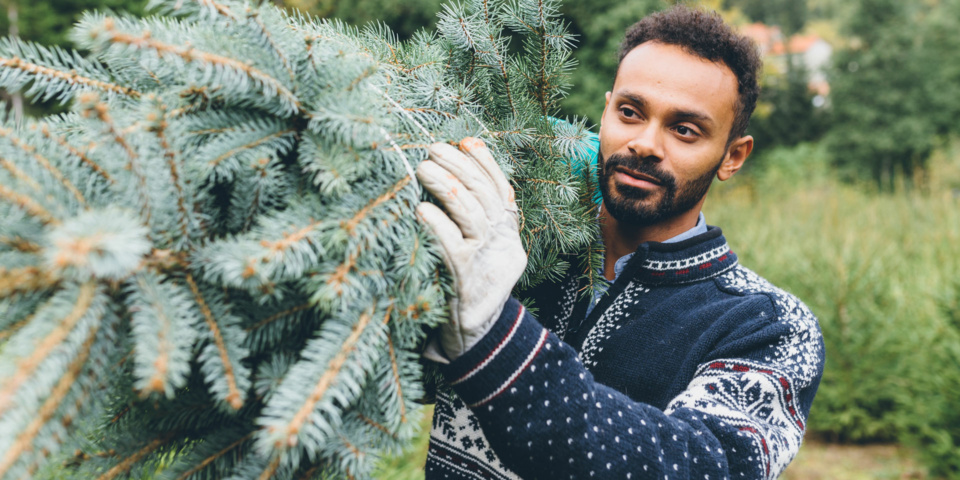 Regift and recycle: 12 ways to have a more sustainable Christmas
