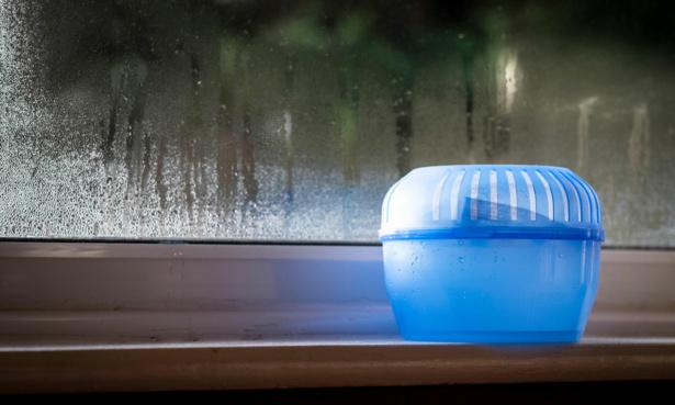 Damp trap on a windowsill