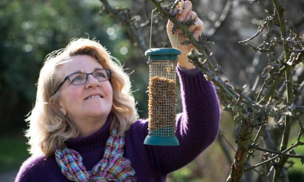 Putting up a bird feeder
