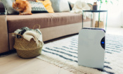 Dehumidifiers for tackling damp: five ways to get the most out of your dehumidifier