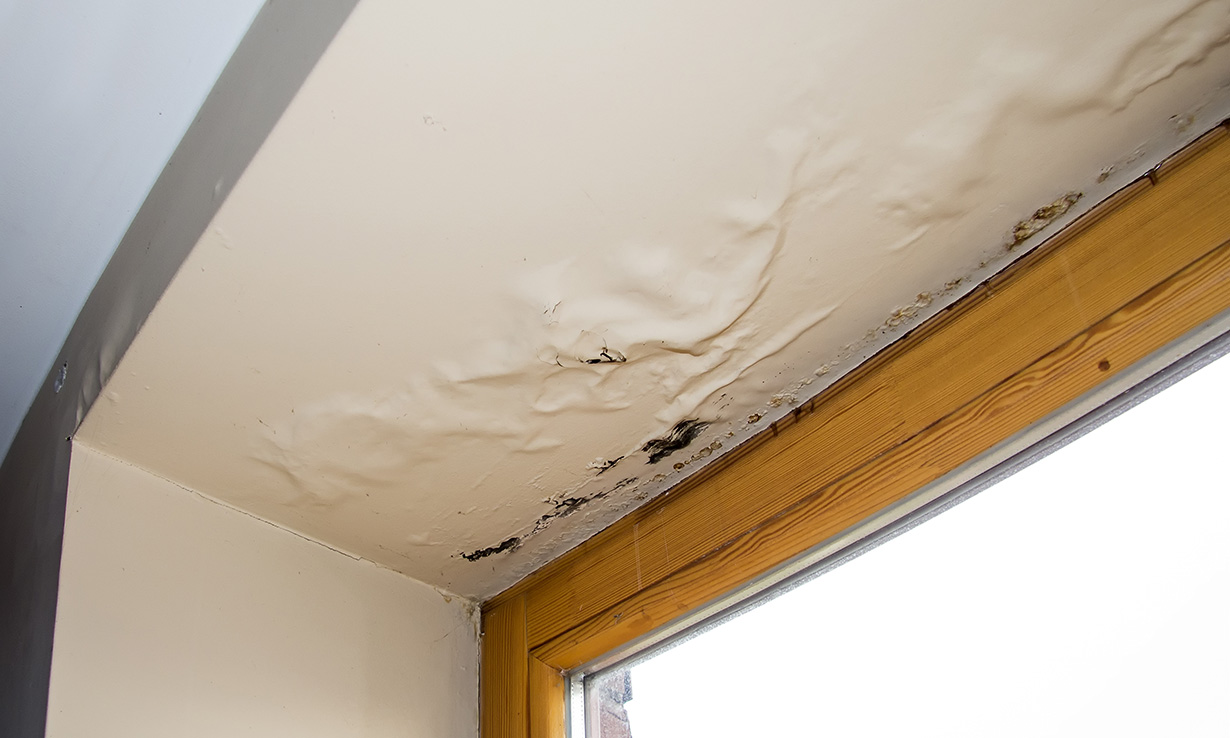 Water-damaged ceiling
