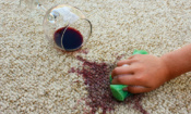Which carpet stain remover home remedy is best?