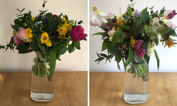 The Great British Florist bouquet before and after a week.