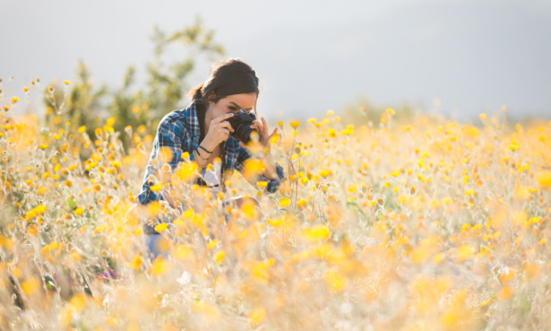 How to take great wildlife photography for spring 2021